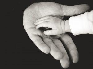 fatherhands